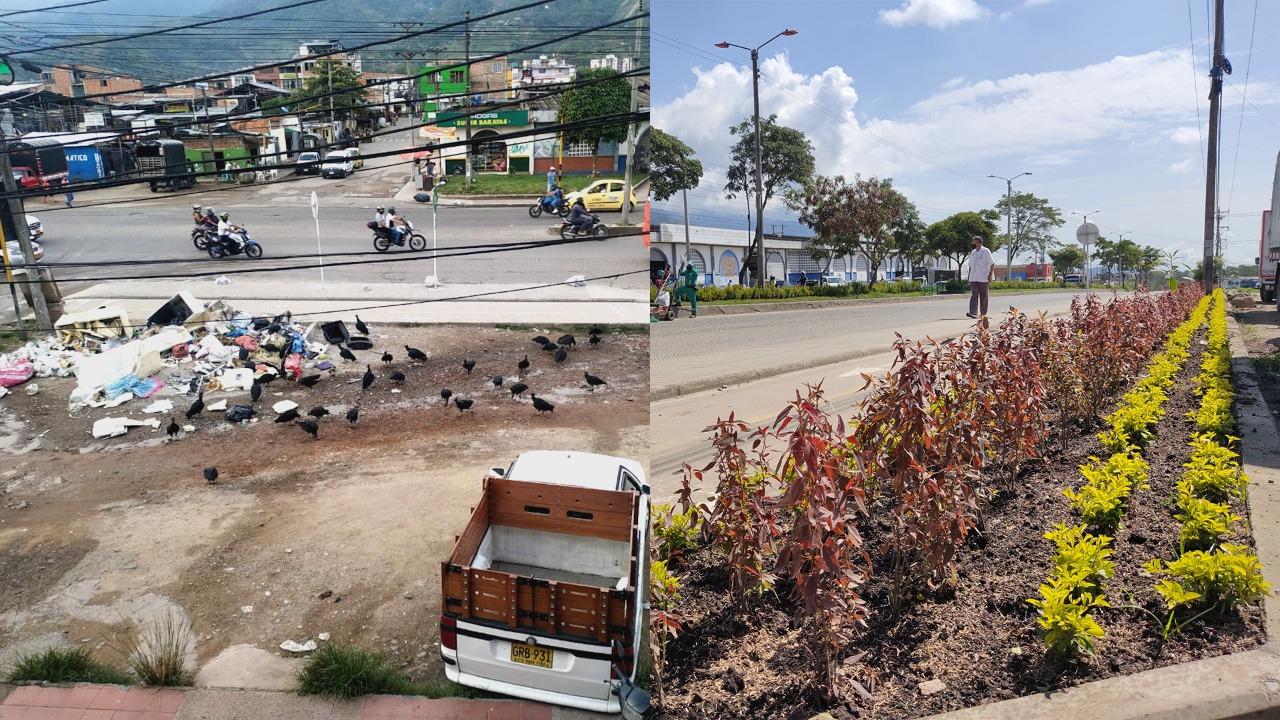 ¡Qué cambio! El separador de la calle 100 con Quinta es un jardín urbano!